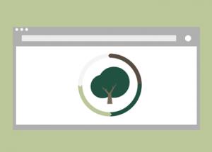 Online-Shops für grüne Produkte: Von Avocado Store bis Munio.