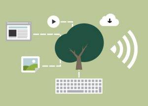 World Wide Nachhaltigkeit: die besten Blogs im August.