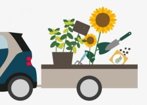 Urban Gardening – Landwirtschaft in der Stadt.